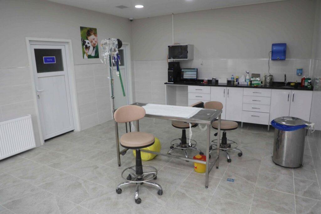 238612-sokak-hayvanlari-rehabilitasyon-unitesi-hizme-eyupsultan-fotogaleri_800x535
