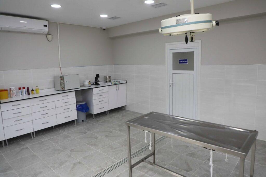 238616-sokak-hayvanlari-rehabilitasyon-unitesi-hizme-eyupsultan-fotogaleri_800x535