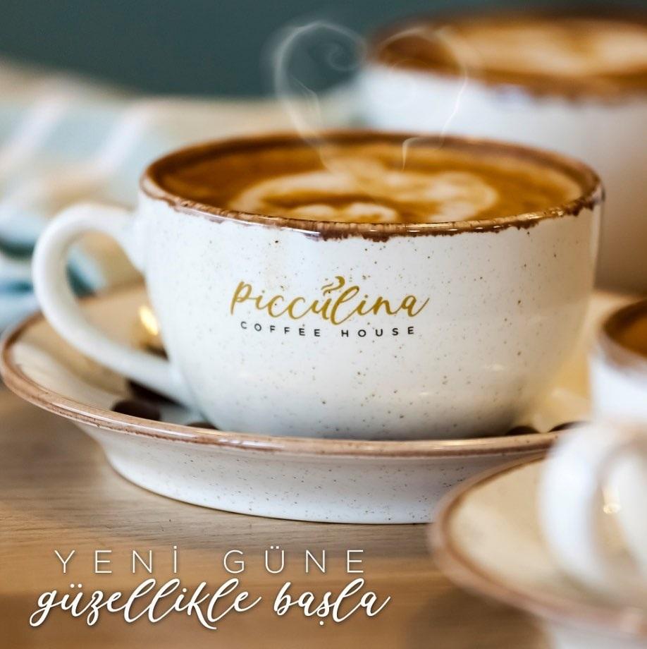 Picculina Coffee House Göktürk (2)